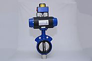 Butterfly Valves | Damper Butterfly Valves Manufacturer in India - 9881236139