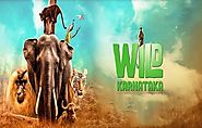 Wild Karnataka (2020) DVDScr Kannada Movie Watch Online Free Download