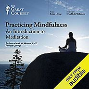 Amazon.com: Practicing Mindfulness: An Introduction to Meditation (Audible Audio Edition): Mark W. Muesse, The Great ...