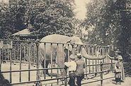 Zoological Garden of Hamburg