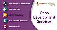 OpenERP/Odoo Software Development and Consulting Company in India