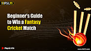 Beginners Guide to Win Fantasy Cricket Match - Fsl11 Blog