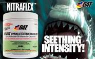 Nitraflex Bodybuliding Reviews For Muscle & Strength | Besr Suggestor