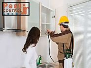 The quality of best pest control service provider and what is first step of them