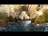 Kayaking Isla Espiritu Santo - Mexico 2014 (BOA) GoPro Hero3 Black Footage