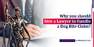Why you should hire a lawyer to handle a dog bite claim?