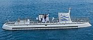 Private Submarine Tour in Barbados - Our Special 5 Star Champagne Tour