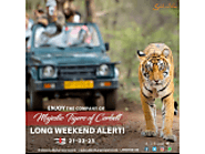 Enjoy Jungle Safari in Corbett - Classified Ad