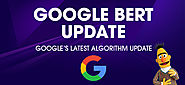 Google BERT Search Algorithm Update. Knowing it Better!