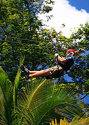 Zip line Over The Rainforest