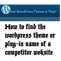 How to find the wordpress theme or plug-in name of a competitor website or blog