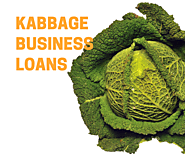 Kabbage Business Loans: 2020 Review | LendingBuilder