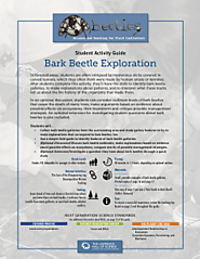 Bark Beetle Exploration - Beetles Project Focused Exploration