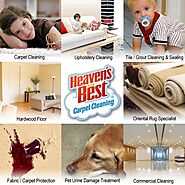 Heaven's Best Carpet Cleaning McKinney, Frisco, N Collin County, TX!