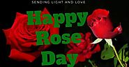 Date of Rose Day and the meaning of Different Roses