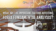WHAT ARE THE IMPORTANT FACTORS AFFECTING FOREX FUNDAMENTAL ANALYSIS?