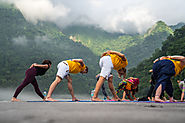 Website at https://yogatherapyfoundation.com/200-hour-yoga-teacher-training-rishikesh.php