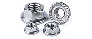 Stainless Steel Flange Nuts Manufacturers Suppliers Dealers in India - Caliber Enterprises