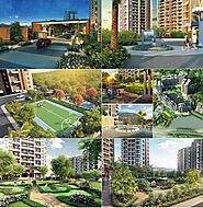 Rise Of Residential Properties In Pune on Behance