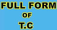 TC full form | Full form of TC | what is the meaning of TC in English ?