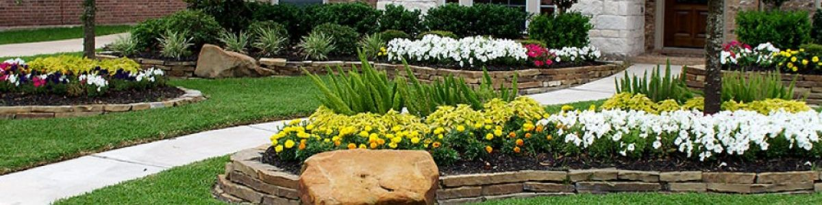 Headline for Professional Landscaping in Houston TX | BDH Landscaping