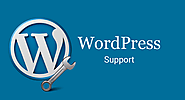WordPress Support Phone Number