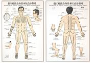 Shiatsu and acupressure