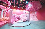 There Is An Edible Cotton Candy Forest In A Museum