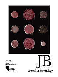 "Production of actinorhodin-related ""blue pigments"" by Streptomyces coelicolor A3(2). 