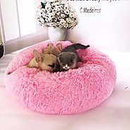 Shop for Washable Round Shape Bed for Pets |ShoppySanta
