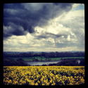 Audioboo / #AudioMo - Day 23 - Ogston Reservoir