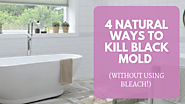 4 Natural Ways To Kill Black Mold - House Bliss Cleaning