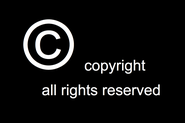A Primer on Videos Copyright Usage