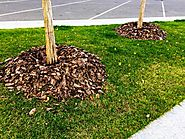 Melbourne Tree Mulching Services