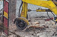 Tree Stump Removal Melbourne