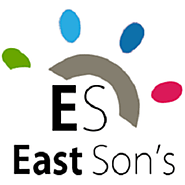 EastSons' Hybrid App Development Services