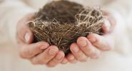 Empty Nest: Life Beyond Parenting - Now What?
