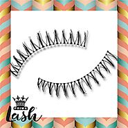 Basics 5 Pair Pack Vegan Lashes #Kylie (Lower Lashes) – Primalash