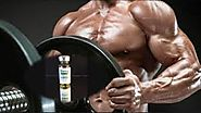 Contact Steroidkart | Steroids in India | Top Steroid Brands