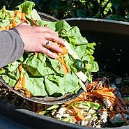 Green Waste Removal Sydney , Organic Waste Management- Recycling