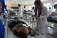 MBBS in Philippines Look at the Lab Facilities in Philippines - Maven Overseas