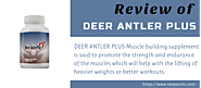 Deer Antler Plus Reviews 2020