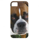 American Bulldog iPhone 5 Case from Zazzle.com