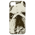 BULLDOG iPhone 5 CASE from Zazzle.com