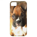 Boxer dog iPhone 5 Universal Case iPhone 5 Cases from Zazzle.com