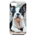 French Bulldog iPhone 5 Cover from Zazzle.com