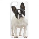 French Bulldog photo iPhone 5 mate case, gift idea iPhone 5 Covers from Zazzle.com