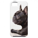 French Bulldog iPhone 5 Case from Zazzle.com