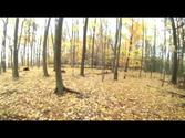 Fall Color Mountain Bike Ride - Camp Vits Trail, Manitowoc, WI