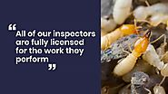 Professional Pest Control Blue Mountains - Falls Pest Control